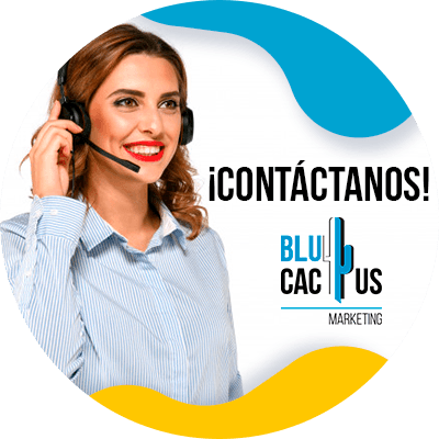 BluCactus - persona profesional trabajando