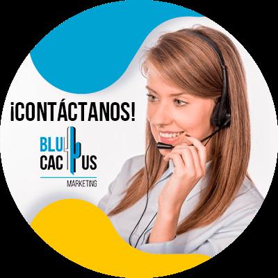 BluCactus - marcas automotrices pueden ganar clientes digitales - contacto