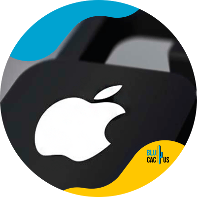 BluCactus - tecnologia con datos importantes