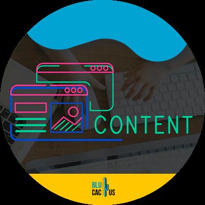 BluCactus - contenido