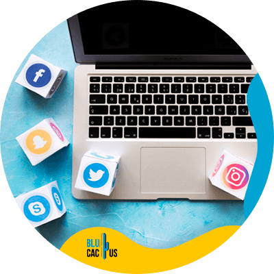 BluCactus - redes sociales
