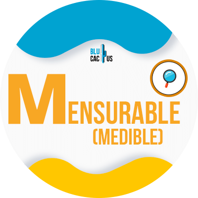 BluCactus -measurable