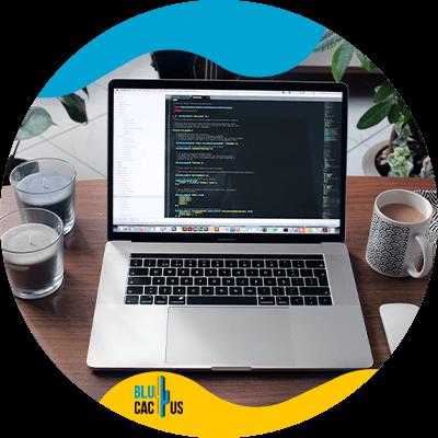 BluCactus - Marketing digital para Programadores de software - ejemplo del funcionamiento del software