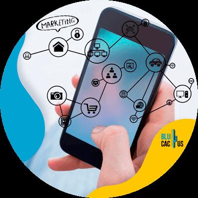 BluCactus -herramientas digitales