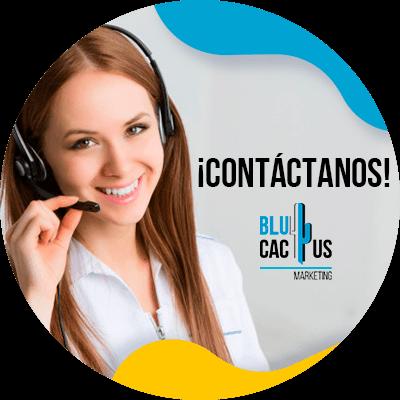 BluCactus - Lista de estrategias en el marketing hotelero - contacto