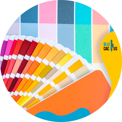 BluCactus - paleta de color