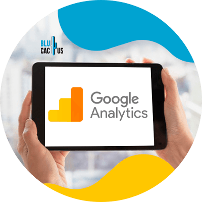 BluCactus -estrategias de marketing de calzados - google analytics