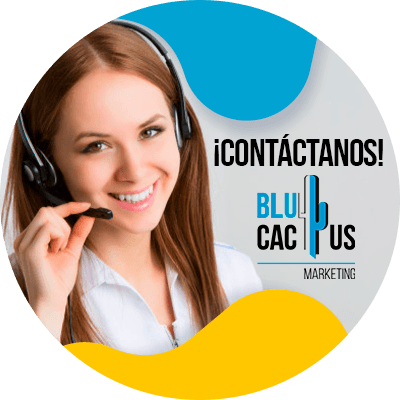 BluCactus -estrategias de marketing de calzados - contacto