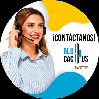 BluCactus - solicitud de un préstamo online - personas profesionales