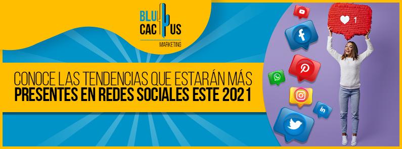 BluCactus -tendencias que estarán más presentes en Redes Sociales - titulo