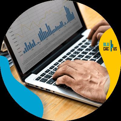 BluCactus - datos importates