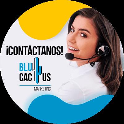 BluCactus - datos iportantes