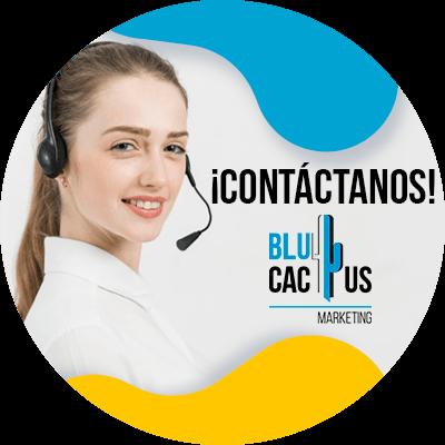 BluCactus - Rediseño web - informacion importante