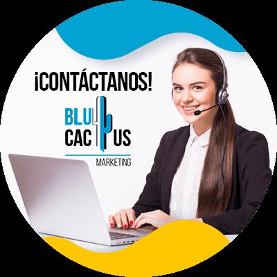 BluCactus - marcas de cosméticos - contacto