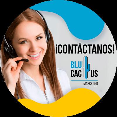 BluCactus - ¿Qué es el Contenido Evergreen? - información importante