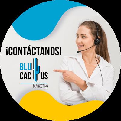 BluCactus - pasos para crear una estrategia de Marketing B2B efectiva - informacion importante