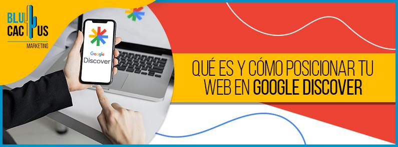 BluCactus - Google Discover - titulo