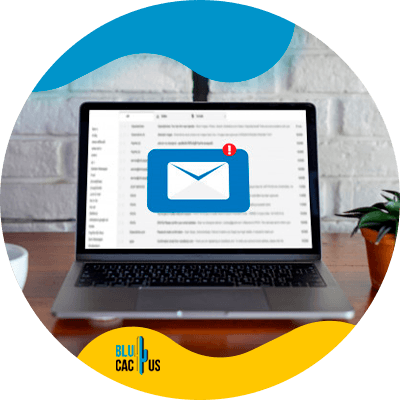 BluCactus - Generar más tráfico a tu sitio web - Información importante