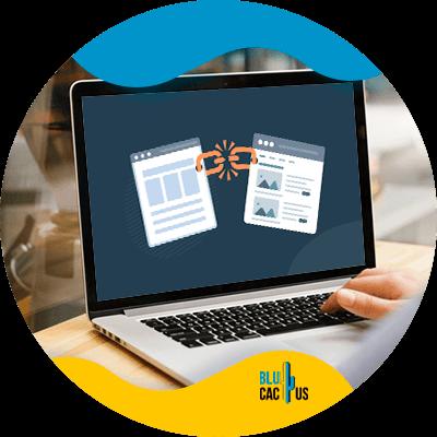 BluCactus - Estructura de enlaces internos - datos importantes