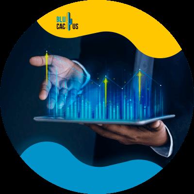 BluCactus - estrategia de marketing digital - informacion iportante