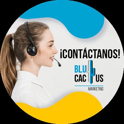 BluCactus - optimización de la tasa de conversión - información importante