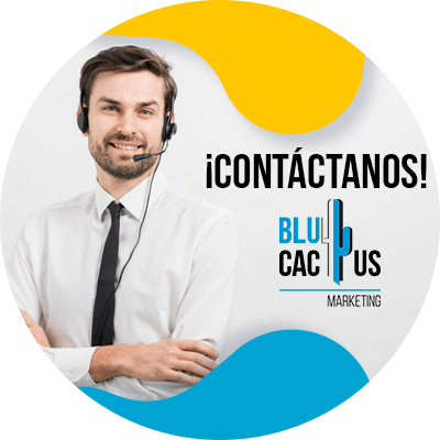 BluCactus - errores de SEO que cometen los pequeños negocios - informacion importante
