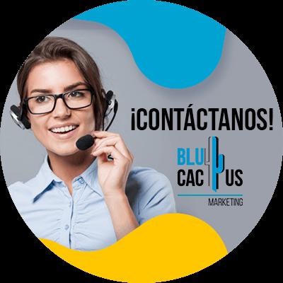 BluCactus - informacion importante