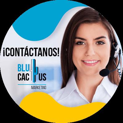 BluCactus - SEO para abogados - datos importantes