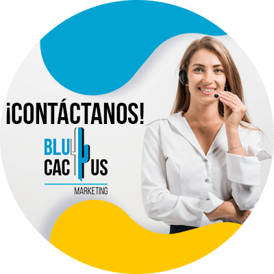 BluCactus - hosting para bloggers - contactanos