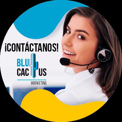 BluCactus - seo de la competencia - informacion importante