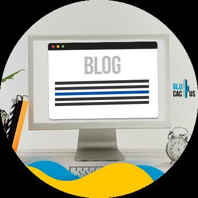BluCactus - Autoridad de Dominio - informacion importante