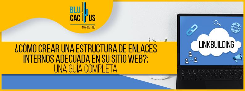 BluCactus - Estructura de enlaces internos. - TITULO