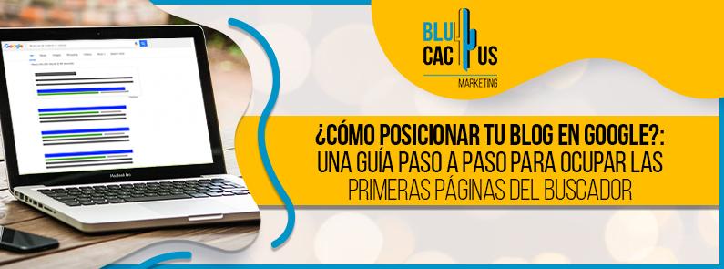 BluCactus - blog en Google - titulo