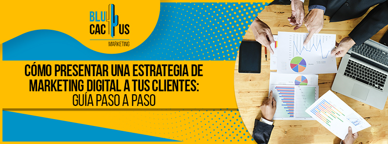 BluCactus - estrategia de marketing digital - title