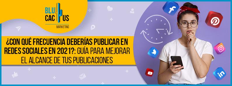 BluCactus - frecuencia de publicaciones en redes sociales - title