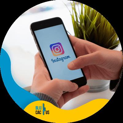 BluCactus - frecuencia de publicaciones en redes sociales - información importante