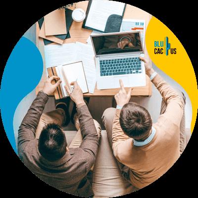 BluCactus - títulos llamativos para blogs - información importante