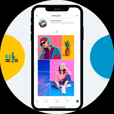 BluCactus - feed de Instagram - informacion importante