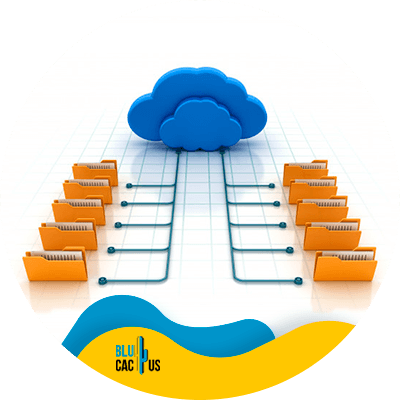 BluCactus - hosting para bloggers - Hosting Compartido