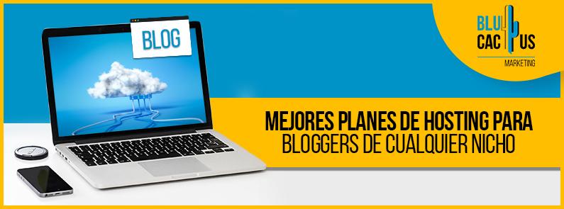 BluCactus - hosting para bloggers - titulo