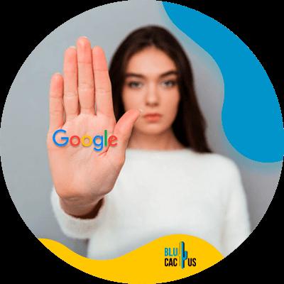 BluCactus - blog en Google - datos importantes