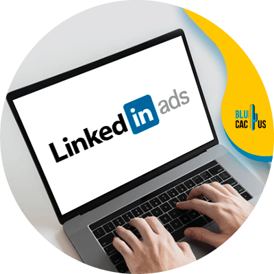 BluCactus - Linkedin Ads - informacion importante