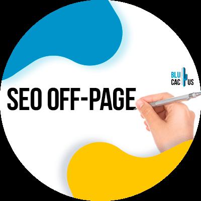 BluCactus - SEO-off page - informacion importante