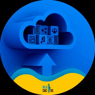 BluCactus - hosting para bloggers - Plataforma de hospedaje