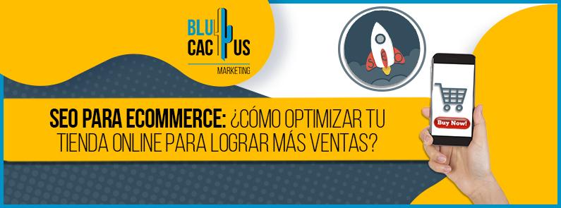 BluCactus - SEO para ecommerce - Titulo