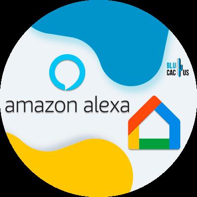 BluCactus - Amazon