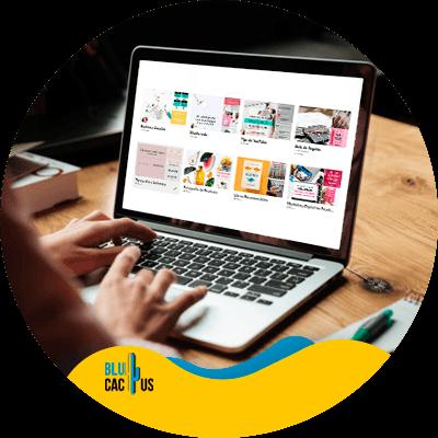 BluCactus - estrategia de marketing en pinterest - información importante