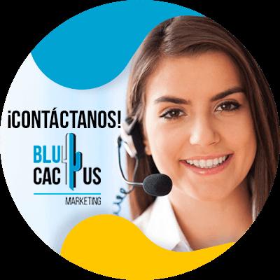 BluCactus - información importante