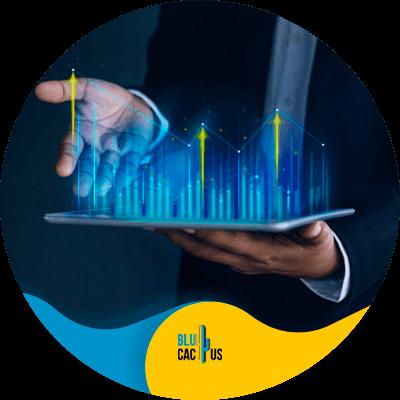 BluCactus - seo de la competencia - datos importantes