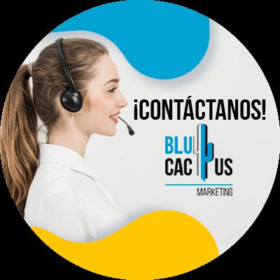 BluCactus - permiso de instalación de anuncios publicitarios - panoramicos